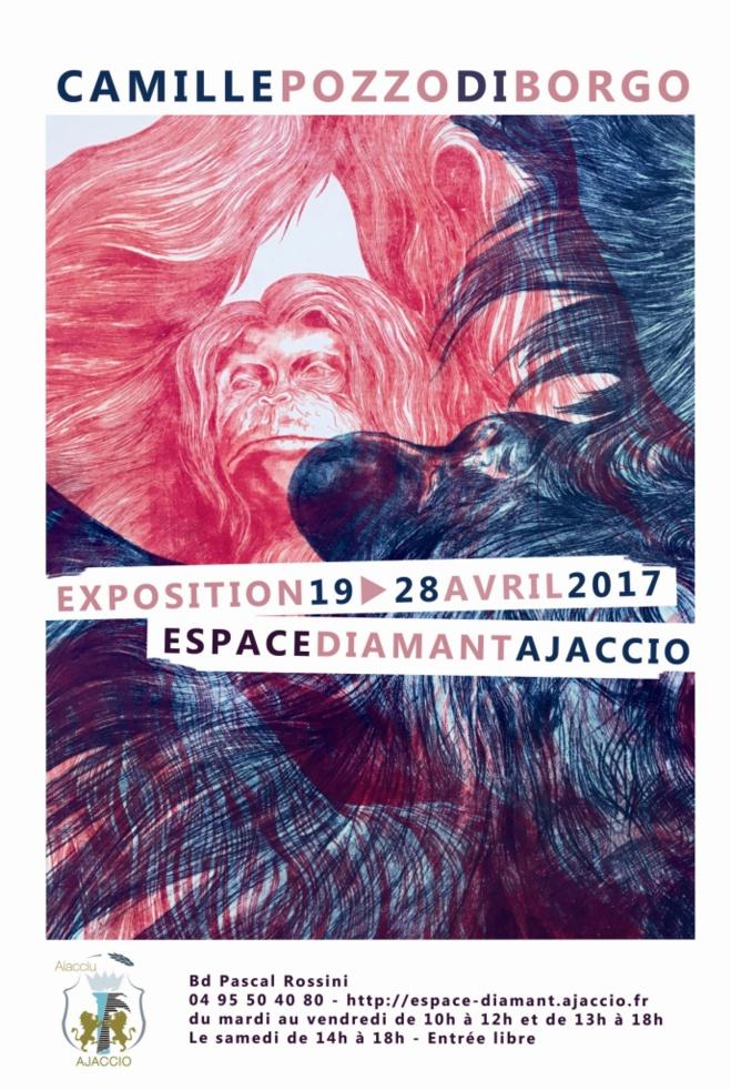 EXPOSiTION : Camille Pozzo di Borgo