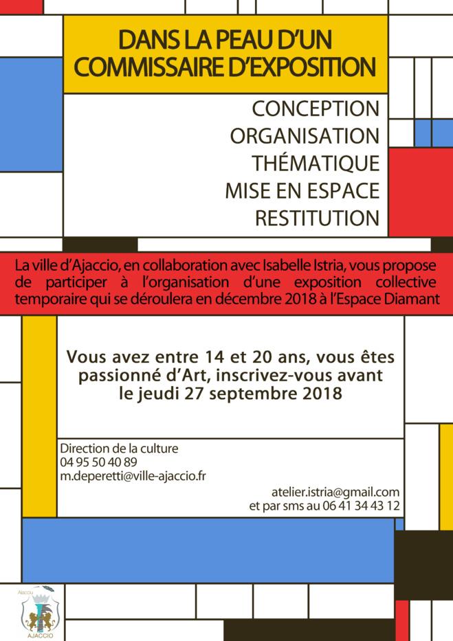 APPEL A CANDIDATURE   « Jeune commissaire d'exposition »