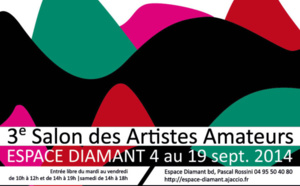3ème Salon des Artistes amateurs du 4 au 19 septembre 2014