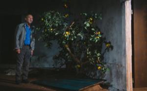 """Mercredi 27 janvier Théâtre : """"Meursaults"""" Une adaptation fulgurante du livre de Kamel Daoud """"Meursault, contre-enquête"""""""